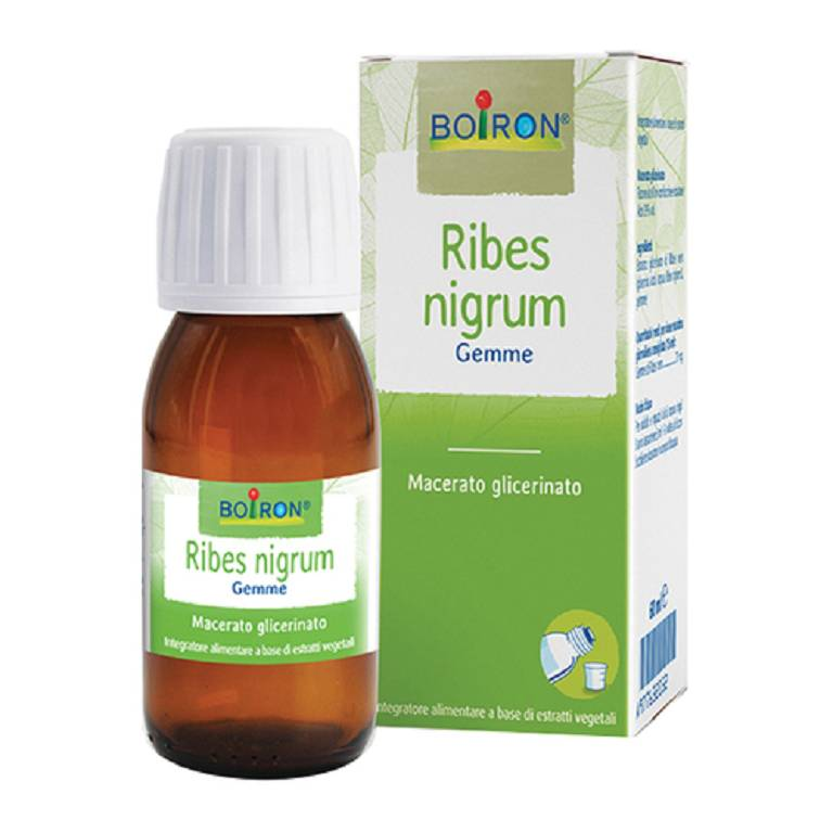 RIBES NIGRUM BOI MG 60ML INT